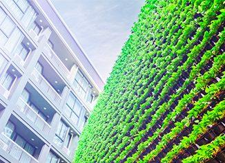 Finanza-Green-il-portale