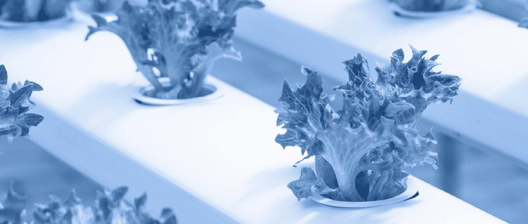 Agroalimentare-startup